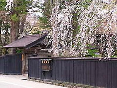 <公式サイトがお得>ちょっと早いGW桜巡りに!送迎可&ワンドリンク付【4月限定・2食付よねしろプラン】